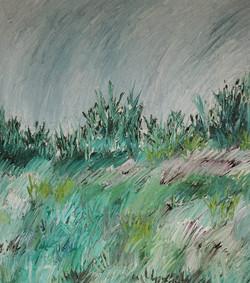 'Grass and Sky'