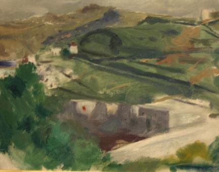 """""""Green Village"""""""