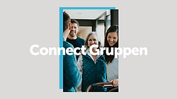 connectgruppen web.png