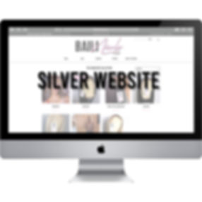 silver website packages graphic.jpg