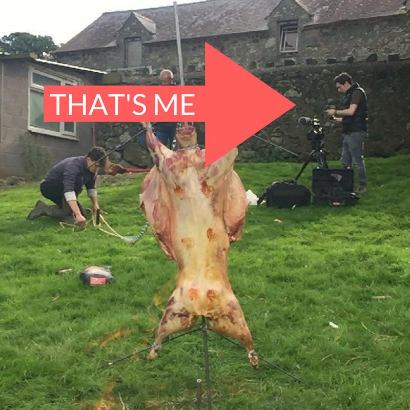 Welsh Lamb - Llamb Day