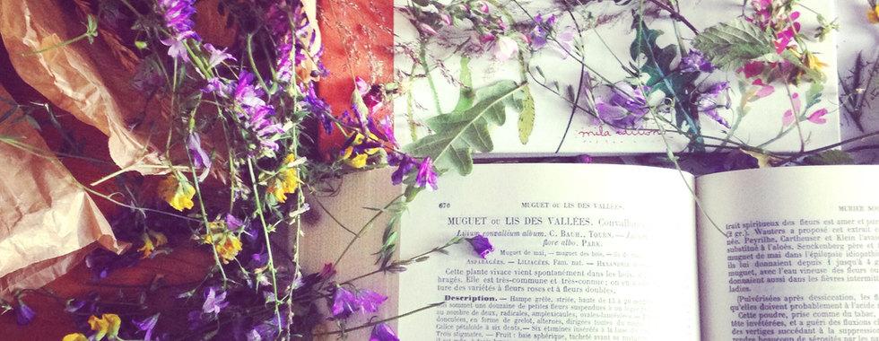 UTILISATION DES PLANTES en phytothérapie, aromathérapie, olfactothérapie, fleurs de Bach