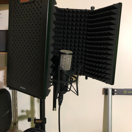 Dubbing and Voice-Overs