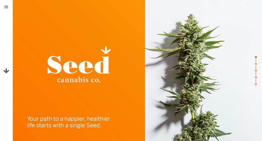 Seed Cannabis Co. — Brand, Naming, and Website
