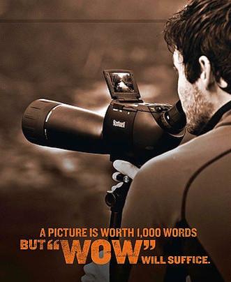 Bushnell — Catalog (Video Scope)