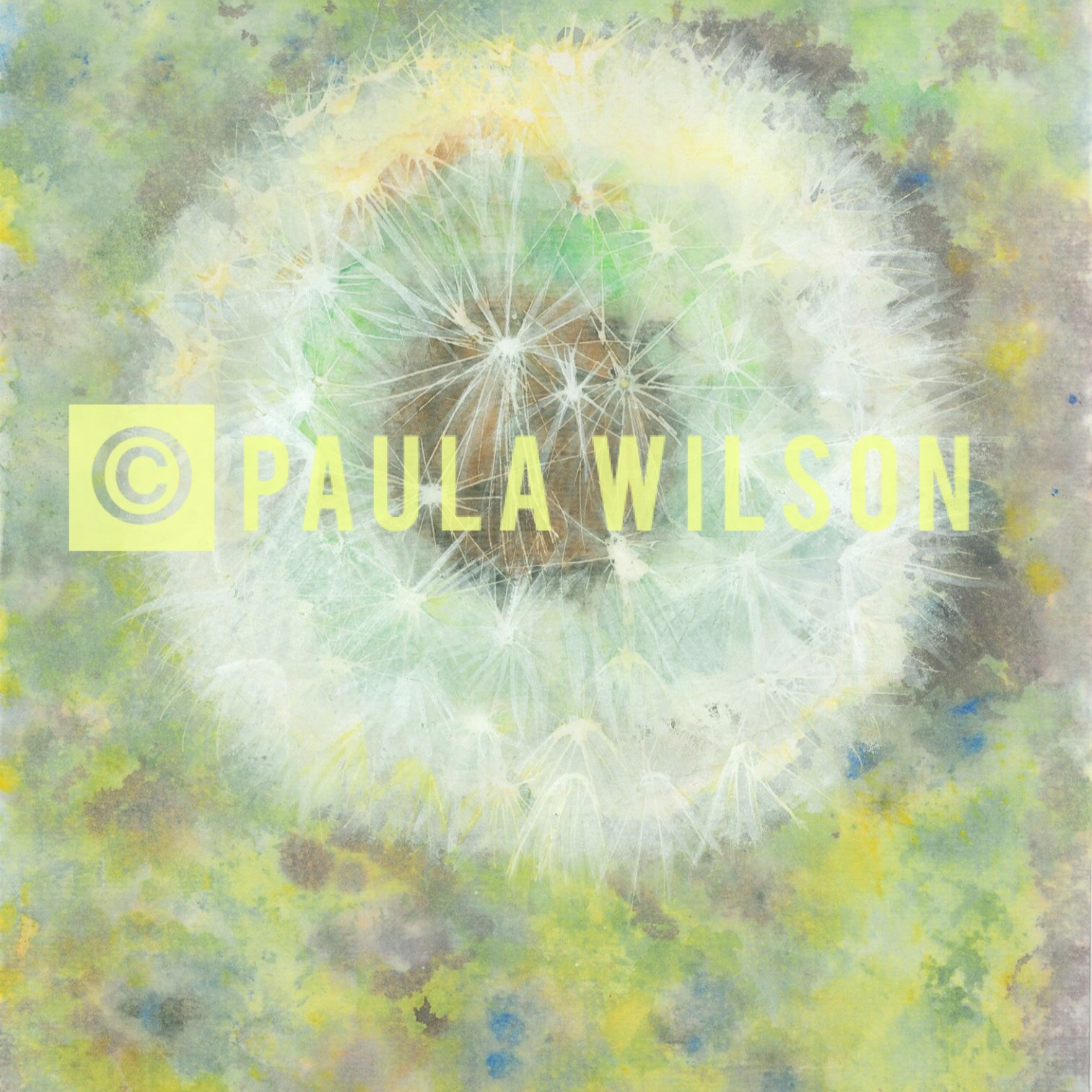 Dandelion Clock No. 1