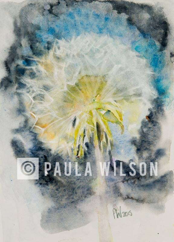 Dandelion Clock No.2