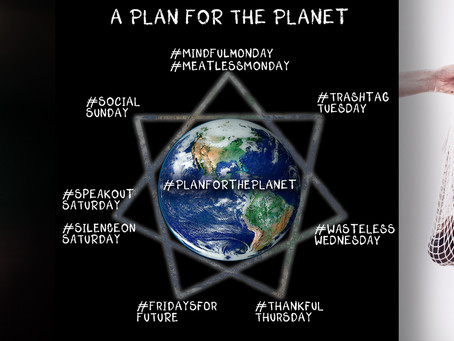 A Plan For The Planet