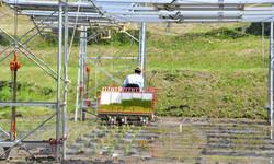 田んぼの発電所で米作り