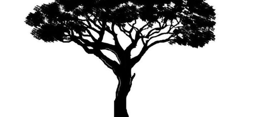 288db2a5f908b5df70d8350de3d1d84b--celtic-tree-tattoos-tree-of-life-tattoos.jpg
