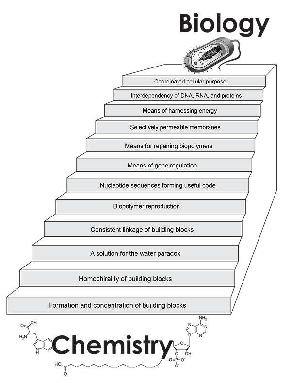 Stairway_to_Life_noBkgnd.png