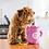 Thumbnail: Waggy Woffie Zippy Burrow Coffee & Donutz