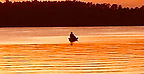 gold sunset lone fishing boat.jpg