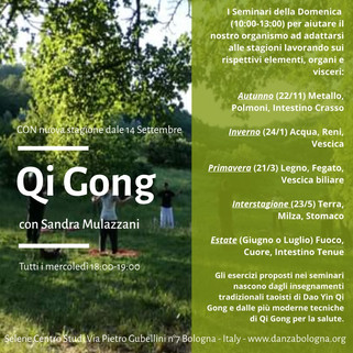 Promo Qi Gong.jpg