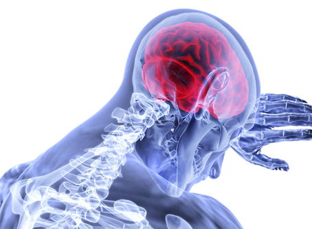 How Chiropractic Adjustments Affect Your Brain
