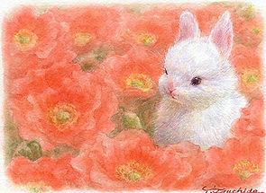 tsuchida_art03.jpg