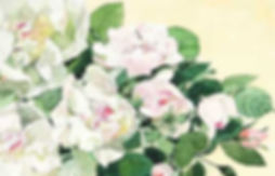 tsugeayako_TakashimayaTopB.jpg