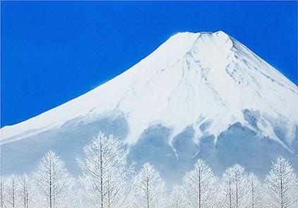 9593_shirayukifuji.jpg
