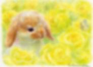 tsuchida_art02.jpg