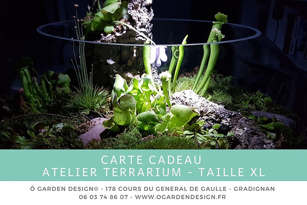 Carte Cadeau Atelier Terrarium Taille XL