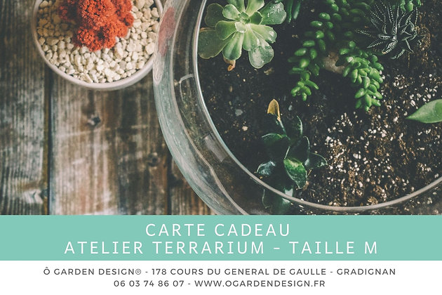 Carte Cadeau Atelier Terrarium Taille M