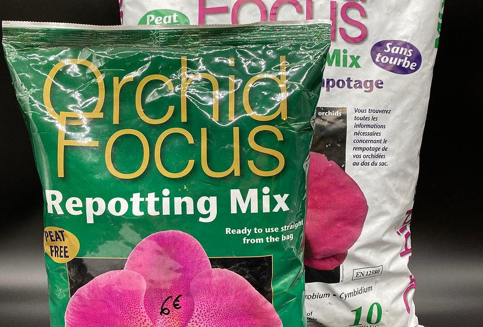 Substrat rempotage pour orchidées 'Orchid Focus'
