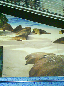 Printed Banner wall
