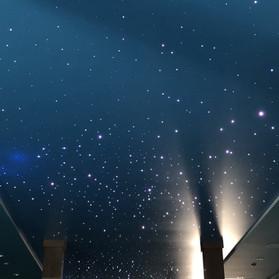 Ceildex Star fiber optics starry ceiling