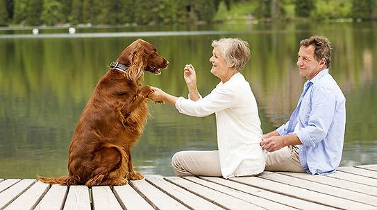 Family & Pets 3.jpg