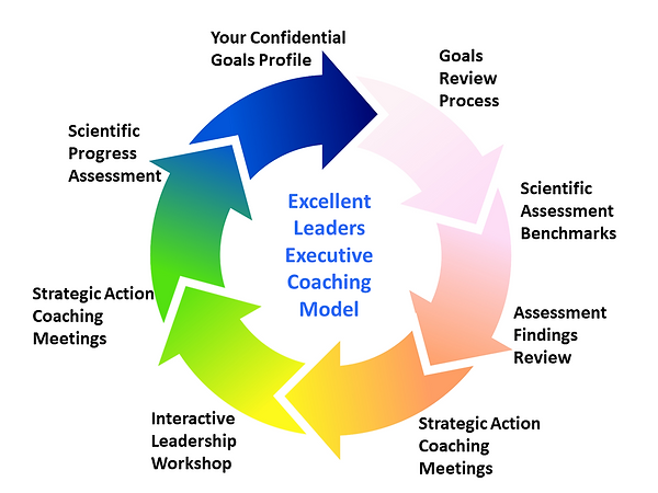 Executive Coaching 4.png