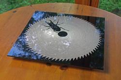 フォトアクリル sb2012 テーブルの上