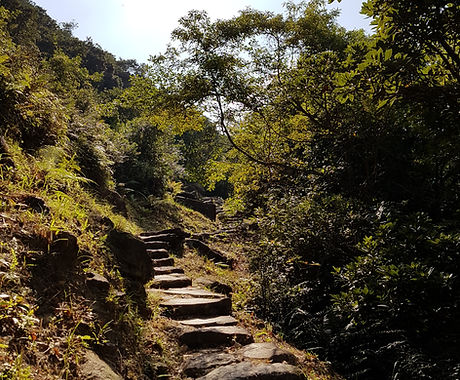 Lantau Trail 5