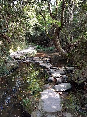 Wu Kau Tang path.jpg