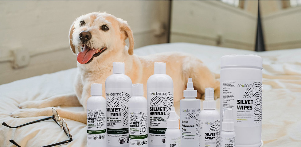 Products%20with%20a%20dog_edited.jpg