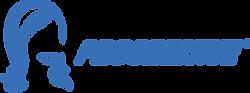NYCity progressive logo.png