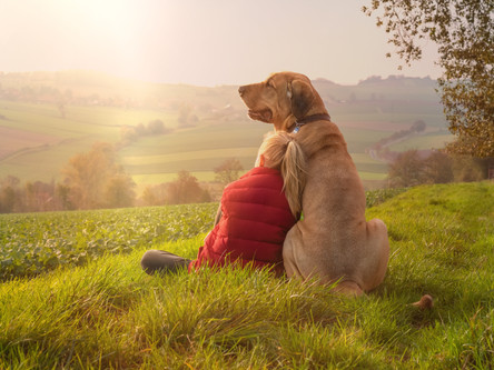 The Loss of a Pet and How You and Your Child Can Cope
