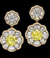 matching pair fancy yellow.jpg