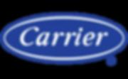 Carrier-Logo-300x185-300x185.png