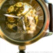 macro watch gold bronze