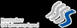 DSLV Logo 2.png