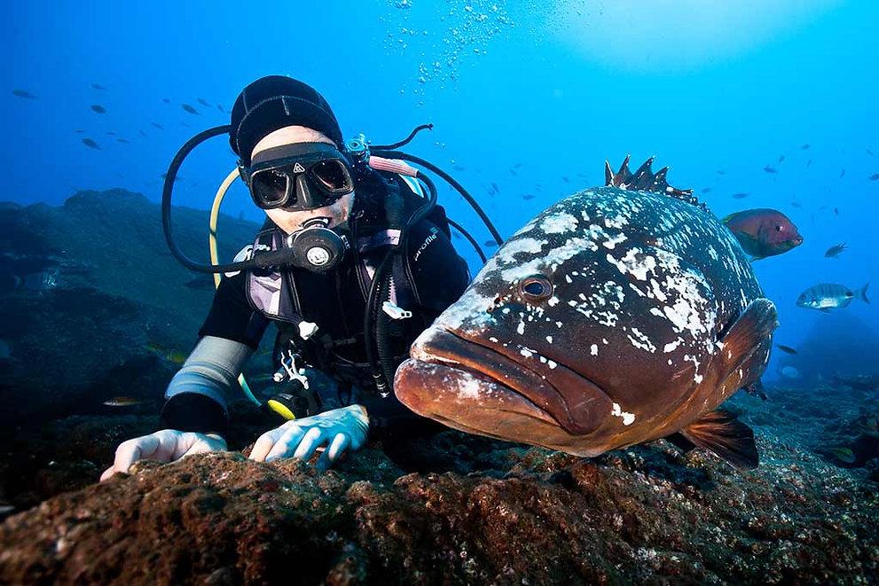 04-Madeira-Diving-Center.jpg