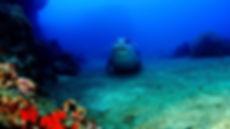 09-Madeira-Diving-Center.jpg