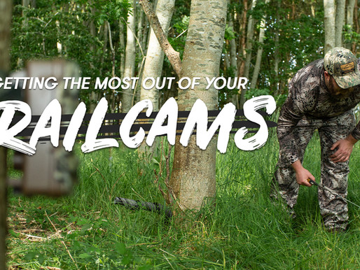 Pre-season Scouting: Getting The Most Out Of Your Trail Cameras 📸