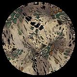 circle_prym1_mp.png
