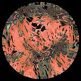 circle_prym1_abalone.png