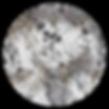 TUNDRAcircle_prym1.png