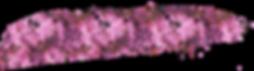 pinkout_stroke.png