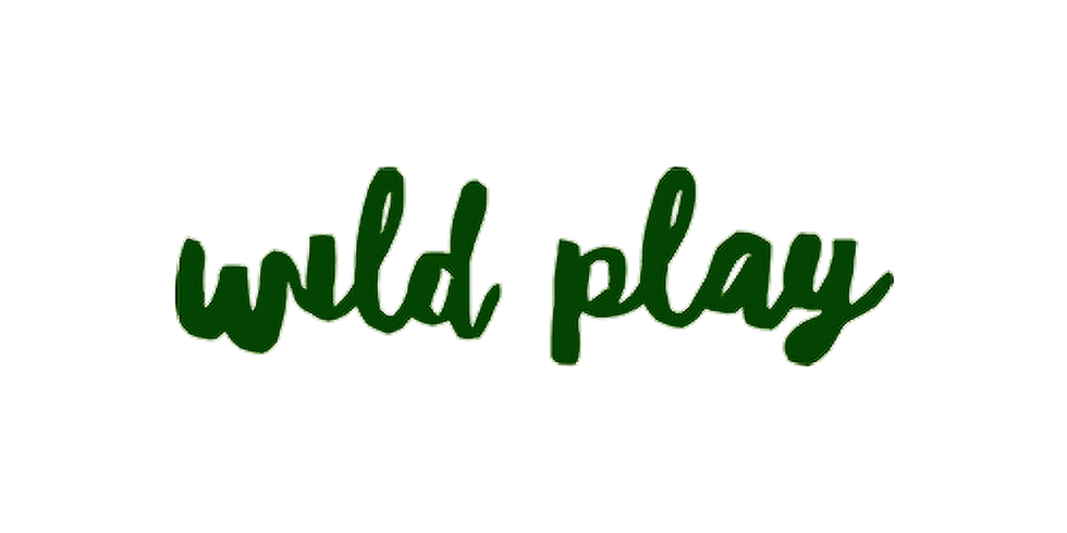 Wild Play (ECC funded session) 23rd October 2021 - 10am-2pm