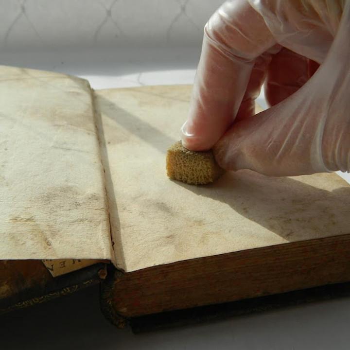 Desinfección de libros con biodeterioro