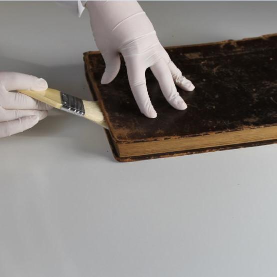 Conservación y Desinfección de libros en biblioteca- Módulo I